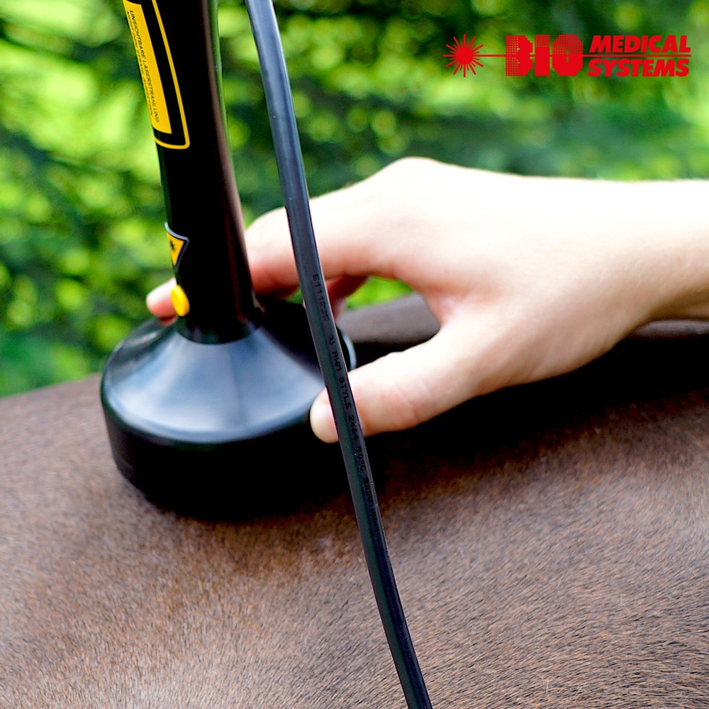 Pulse Diode Therapy Laser Multiprog MP 2510 for horse and small animal