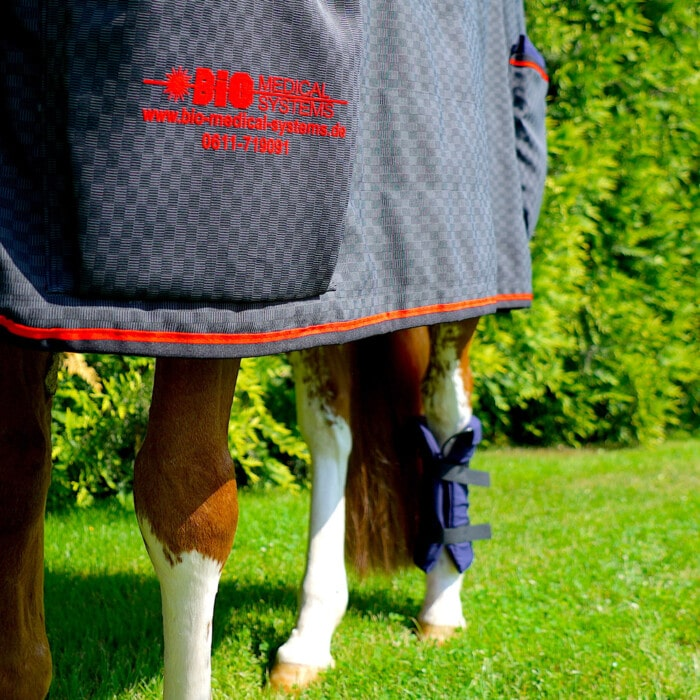 pulsating magnetic field therapy system MDMS 2010 horse