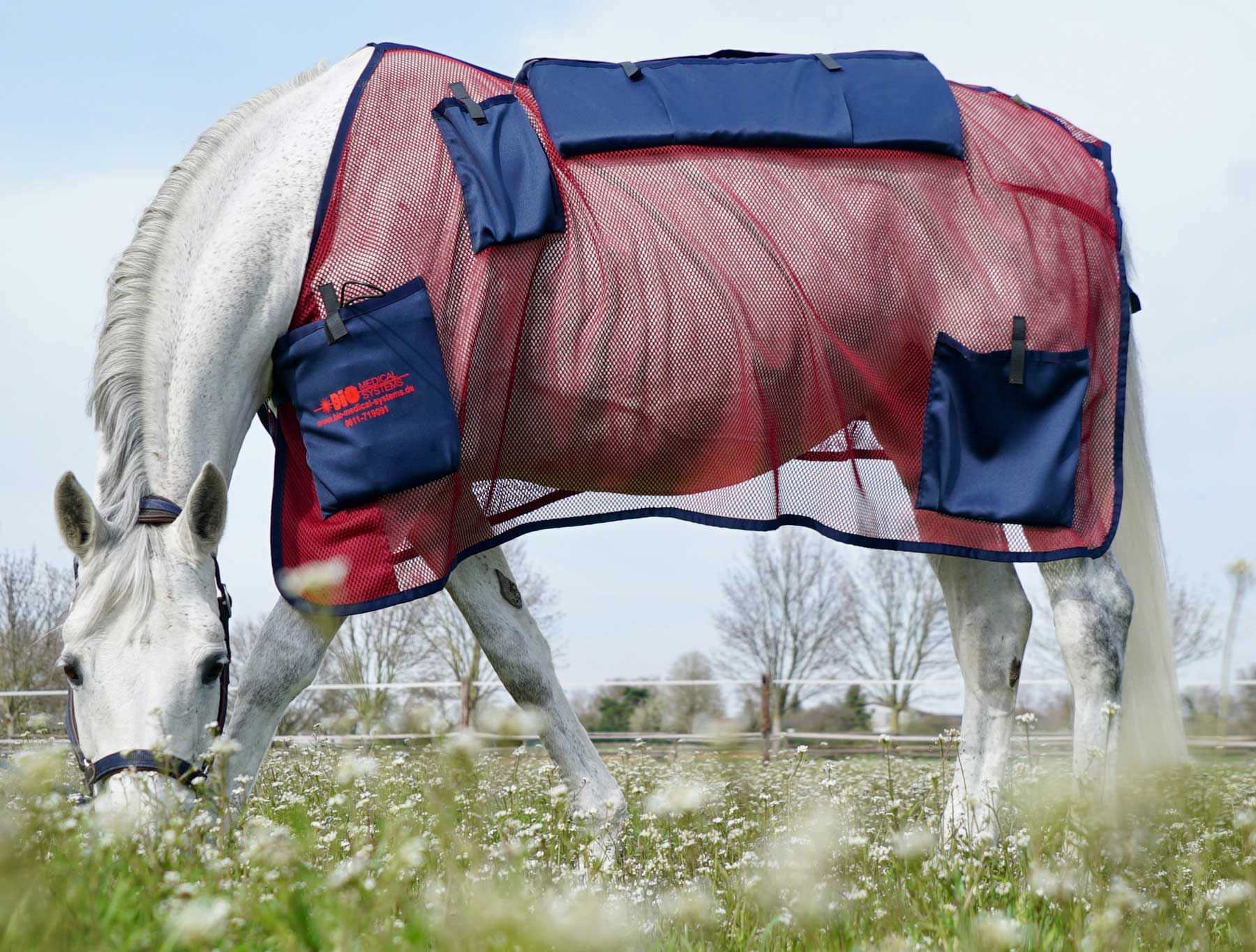 Cover blanket for the pulsating magnetic field system MDMS 2010 for horses